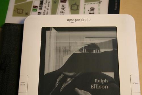 Pantalla del Kindle Estropeada