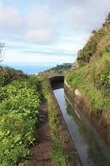Levada do Norte - Madeira (Madeira Walking) Tags: forest walking walk madeira levada norte foresta laurisilva laurissilva laurisilvia donorte laurissilvia xxmw