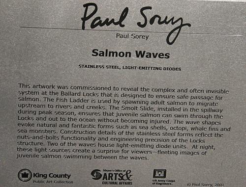 Salmon Wave