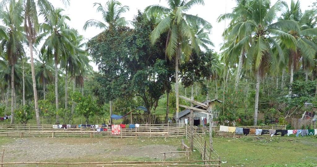 Leyte-Sogod (12)