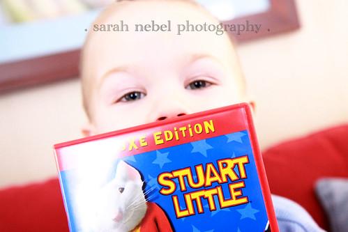 . stuart little .