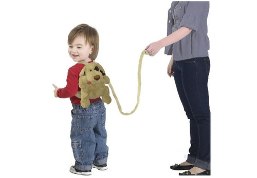 Puppy backpack leash