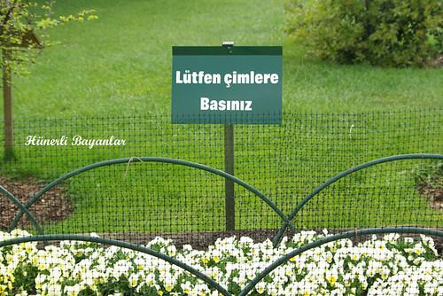 botanik2007-12