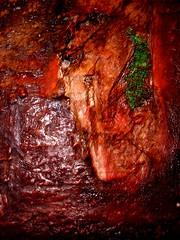 054 (Sandra1688) Tags: paintings abstract landscape art wabisabi nature spiritual mixedmedia layering provera ephemeral organic reuse process earthy intuitive experimentation amalgam found objects sculptural