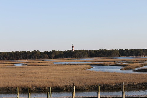 assateague lighthouse visible from bayfront house