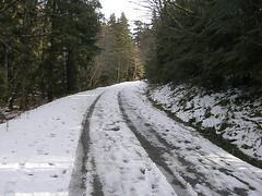 Starting up Deer Creek road.