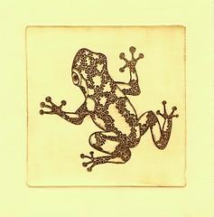 лягушка стандарт 001 (tim.spb) Tags: original etching heart turtle postcard small snail crab valentine ornament owl plates proverbs desigh ãðàôèêà открытки графика малые fibonachi aquafortis формы офорт îòêðûòêè ìàëûåïîëèãðàôè÷åñêèåôîðìû îôîðò ëÿãóøêàñòàíäàðò печатные