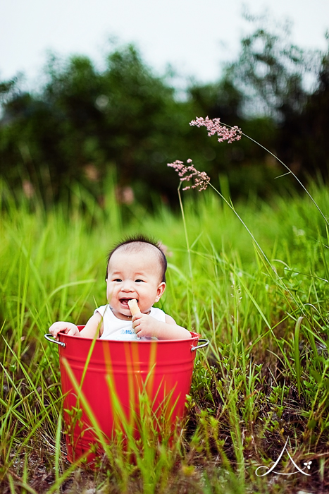 Little J seems happy in the red pail!