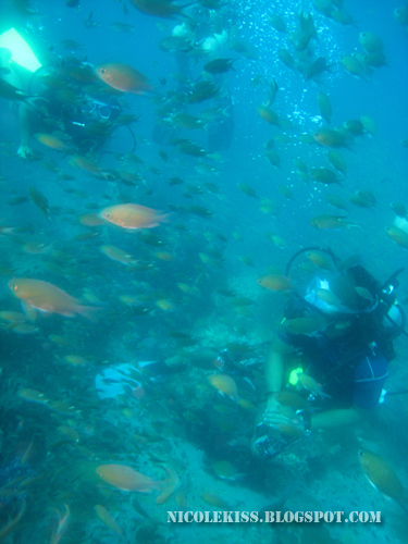 me and someone among fishes