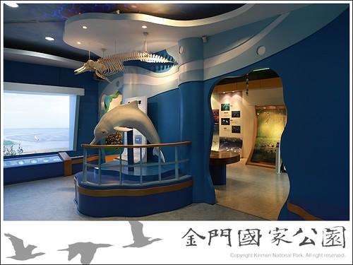 金門中華白海豚生態現況-04(濕地中心骨骼標本)