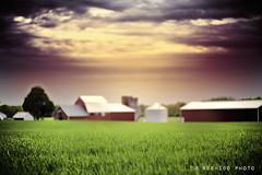 Farmville (Bushido Photo) Tags: sunset tractor nature beautiful grass newjersey nikon farm f14 14 nj 85mm seeds farmville combine 85 d700