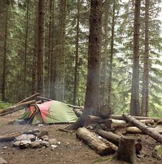 highlands (bego anton) Tags: camp naturaleza nature forest mediumformat arbol highlands arboles escocia hasselblad bonfire bosque fuego troncos acampar hoguera medioformato tiendacampaa