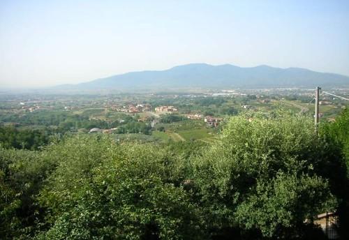 colina del Cerruglio