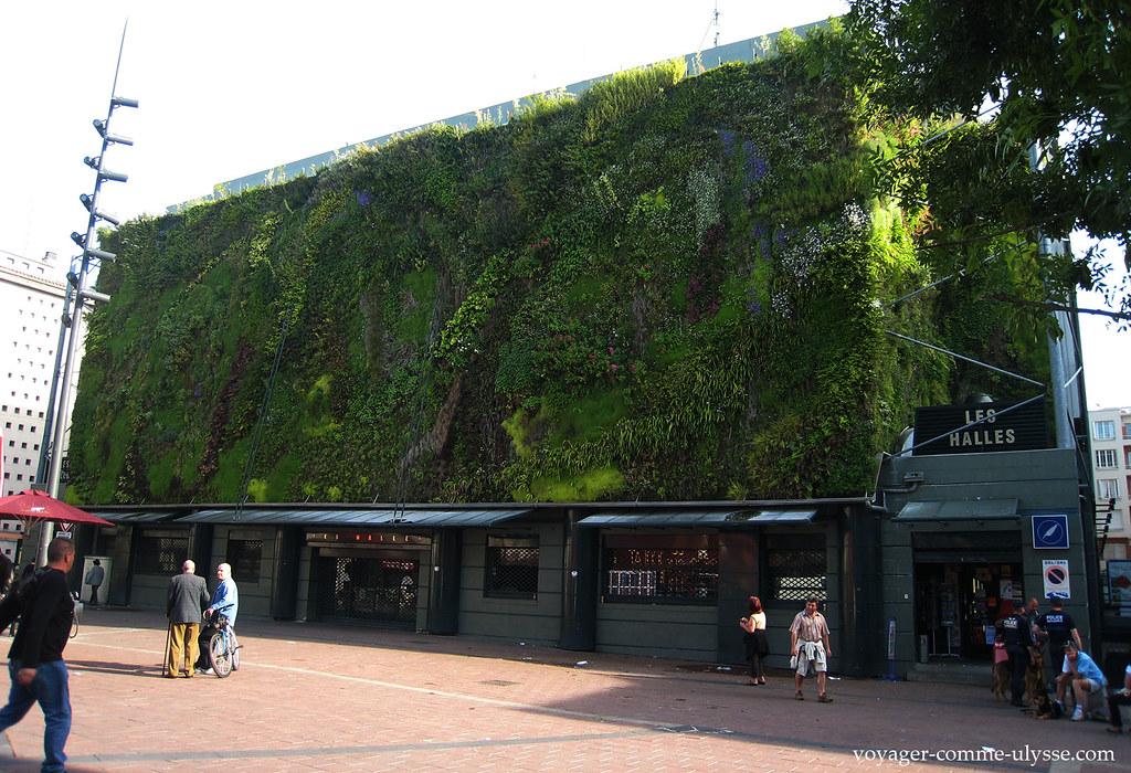 Les Halles d'Avignon