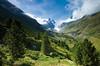 Pfyn-Finges Nature Park (MySwitzerland.com) Tags: summer mountain mountains nature berg montagne landscape schweiz switzerland sommer berge paysage landschaft ch ete montagnes naturetravel stnature stnat