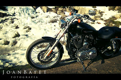 Harley Davidson Sportster Custom 1200 (nieve) (JoanBatet.com) Tags: snow dark lomo nieve motorbike harleydavidson moto custom rueda sportster negra oscura