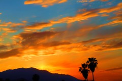 ho hum, boring sunset~ in/out of Explore (BreakingWindPhotography) Tags: california sunset desert palmtrees palmdesert mountsanjacinto