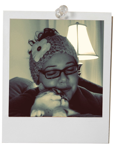 kitty_polaroid