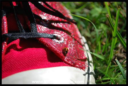 Sneaker Sunday