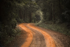 dirt road (Mark Tenney) Tags: road red blur green mystery rural magic nikond50 dirt dirtroad arkansas magical backroad gravelroad naturesgallery mywinners platinumphoto spritofphotography