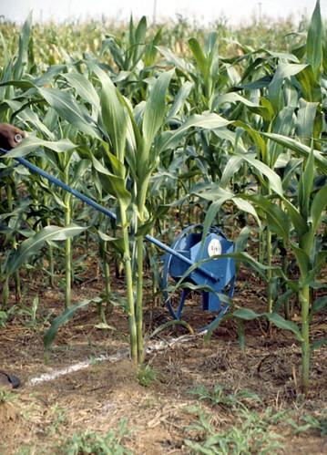 Fabricated fertilizer applicator