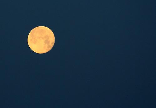 Esa luna pálida.
