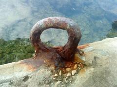 morska2 - veži se