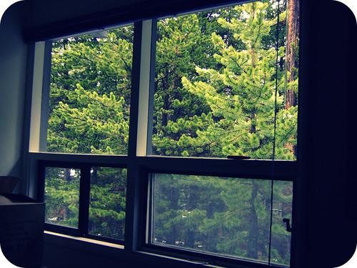 my room (11/365)