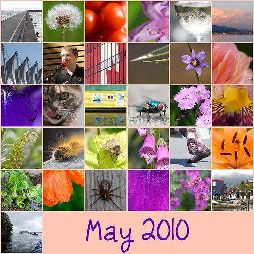 May 2010 Mosaic