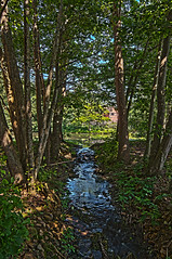 Fantasy Stream (Daddy Oh) Tags: old history museum forest photoshop virginia pond woods nikon stream culture ps american brook popular hdr frontier staunton wwh americanhistory frontierculturemuseum stauntonva fantasyforest 5xp 2ev cs5 d300s photoshopcs5 treckr 58665xp2evstreamnexttoirishforgehdr2