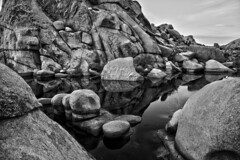 Joshua Tree ( Reflections ) (-william) Tags: sky clouds cool rocks desert joshuatree cool2 cool5 cool3 cool6 cool4 d700 cool7 iceboxcool unanicool iceboxphotooftheweek4