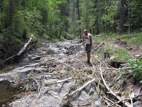 Upper Bonito Creek