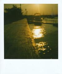 Sun Stars (rachel.med) Tags: sun reflection stars polaroid sx70 golden waterfront bokeh 600 newburyport