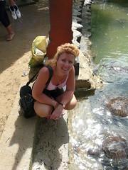P1040775 (raafjes) Tags: bali turtleisland pulauserangan