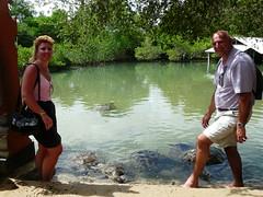 P1040773 (raafjes) Tags: bali turtleisland pulauserangan