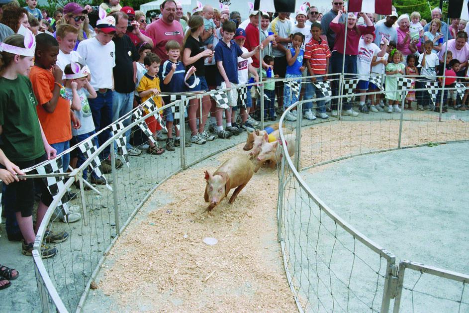 Smithfield Ham & Yam Festival