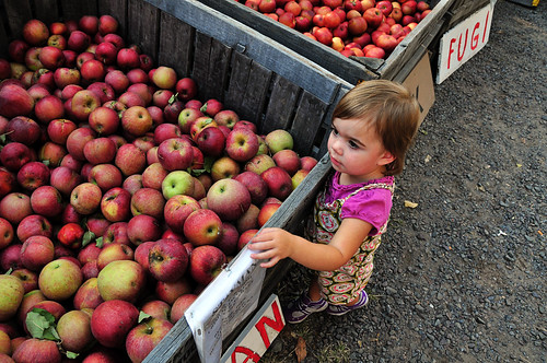 roadside apples