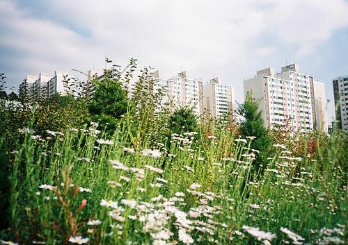 garden/city