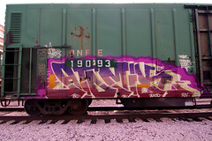ATOMIK (TRUE 2 DEATH) Tags: railroad train graffiti tag graf traintracks rusty trains bn railcar rusted weathered spraypaint boxcar 28 railways railfan freight bnsf reefer graffitiart tsc freighttrain rollingstock wfe atomik buk50 scrapped westernfruitexpress benching bnfe bnfe19093