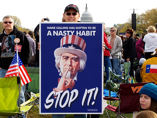 """""""Chamomile Tea Party Poster at Rally for Sanity"""""""