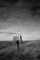 No One Home (jsnowy2768) Tags: sky blackandwhite abandoned mailbox weeds montana post mail farm country madoc feild