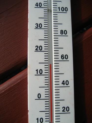 Warm for November