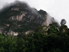 (duanzjira) Tags: travel adventure trip nature khaosoknationalpark khaosok amazingthailand amazing suratthani thailand reviewthailand เขาสก เขื่อนรัชชประภา เขื่อนเชี่ยวหลาน อุทยานแห่งชาติเขาสก สุราษฎร์ธานี