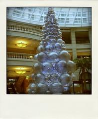 Merry Xmas 2009。bellavita