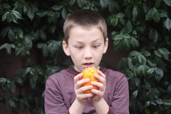 Boy Vs. Kiwano