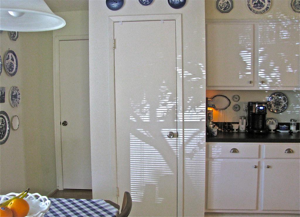 Kitchen Shadows...  2/365