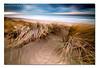 All for you (Jinna van Ringen) Tags: longexposure sea beach grass photography ringen dunes shore elusive van jorinde jinna leefilters elusivephoto canoneos7d jorindevanringen jinnavanringen chanderjagernath jagernath jagernathhaarlem