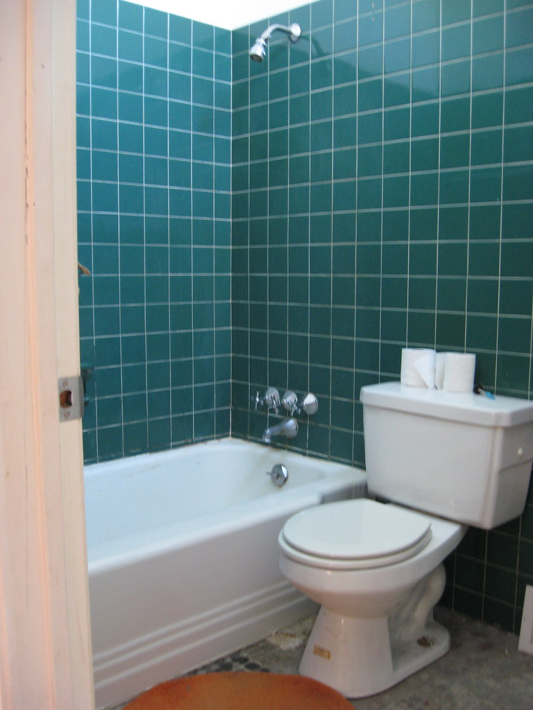 Hall Bathroom - BEFORE - January 2010
