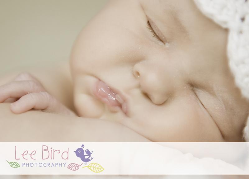 Sienna (c) Lee Bird Photography