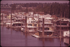 dense crowded marina with many houseboats
